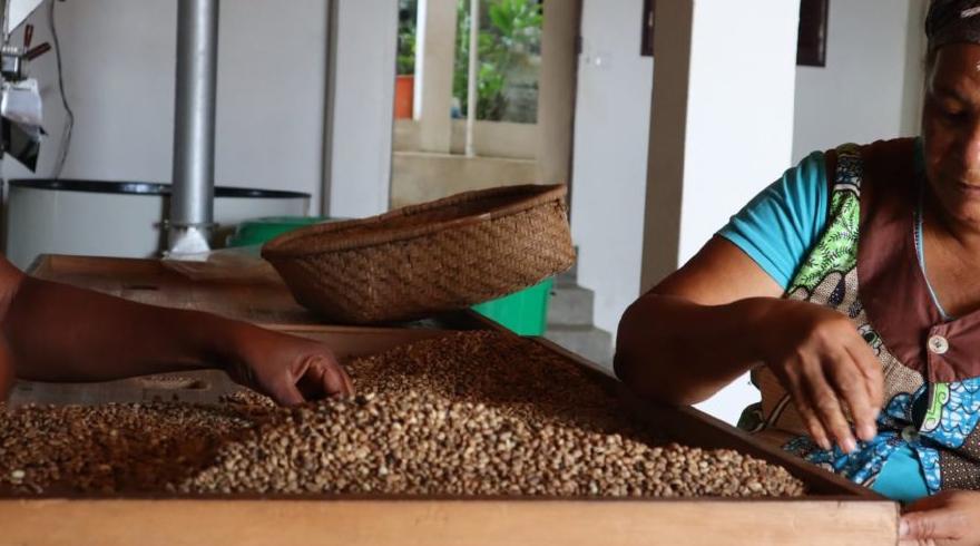 Projeto PAS organiza sessão sobre Sistemas Alimentares Sustentáveis e Empoderamento Feminino em São Tomé e Príncipe