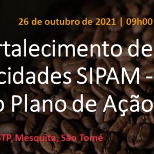 Sessão de fortalecimento de capacidades SIPAM – construção do Plano de Ação